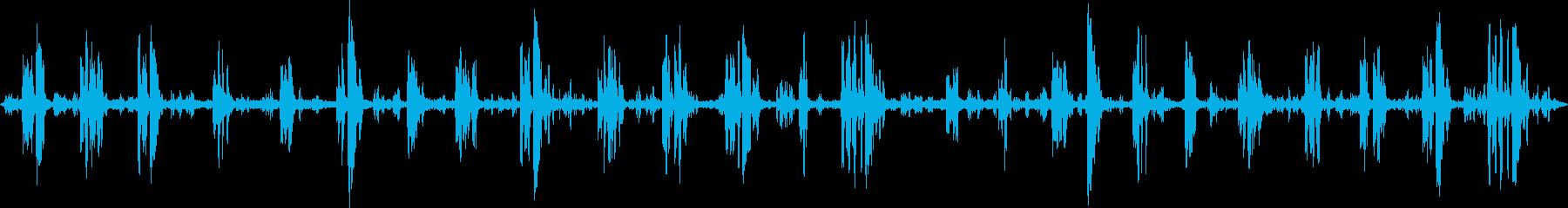 ミドルスルー、バード; DIGIF...の再生済みの波形