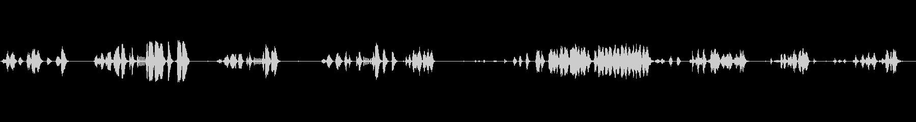 チャイニーズ・スラッシュ・チャープ...の未再生の波形