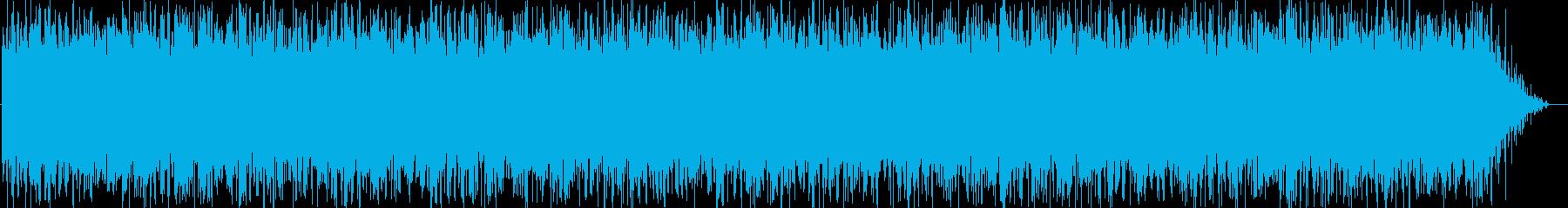 イメージ クレイジーディジュリドゥ03の再生済みの波形