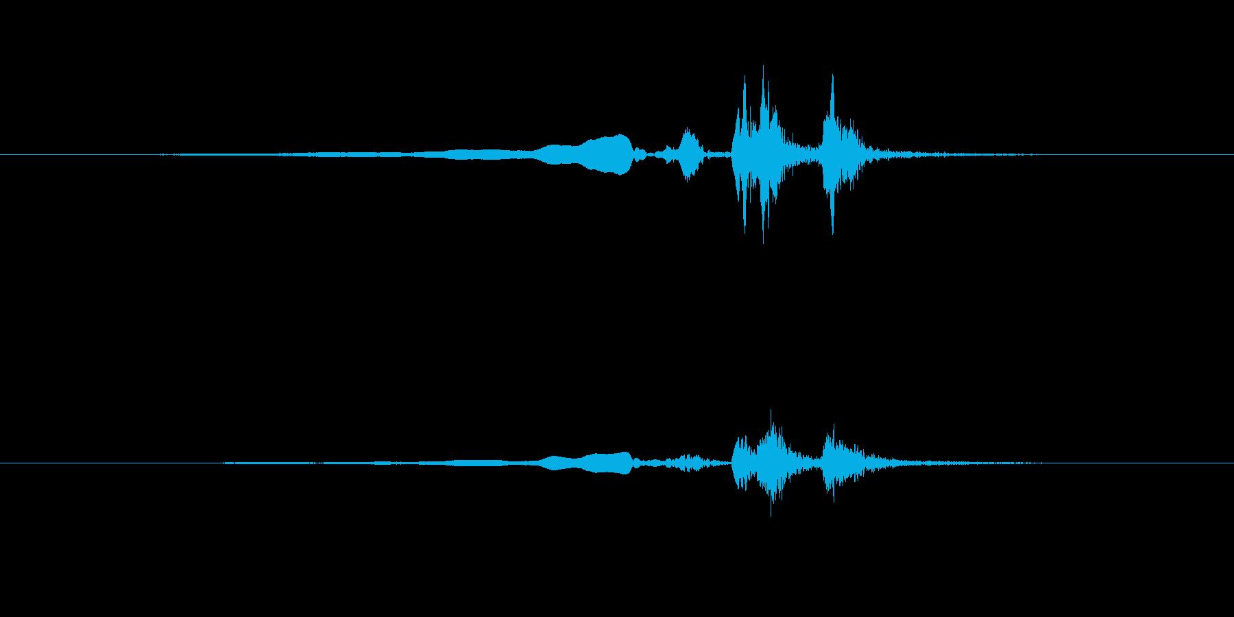 ウグイスのさえずり1の再生済みの波形