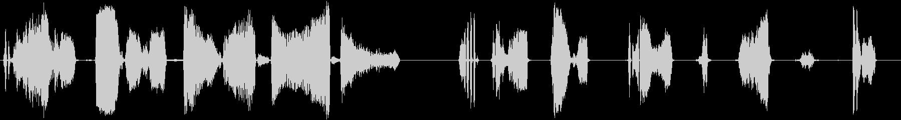 大きな怒ったラットの鳴き声クリーチ...の未再生の波形
