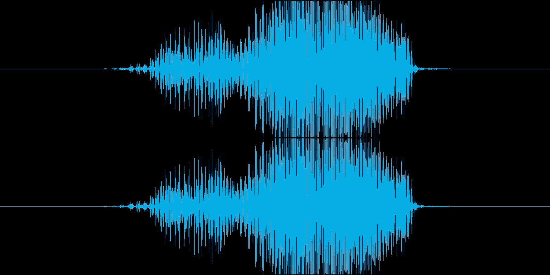 ジッパー閉める音(ブィイイ)の再生済みの波形