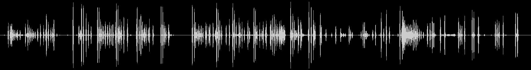 Barえる犬11-シベリアンハスキーの未再生の波形