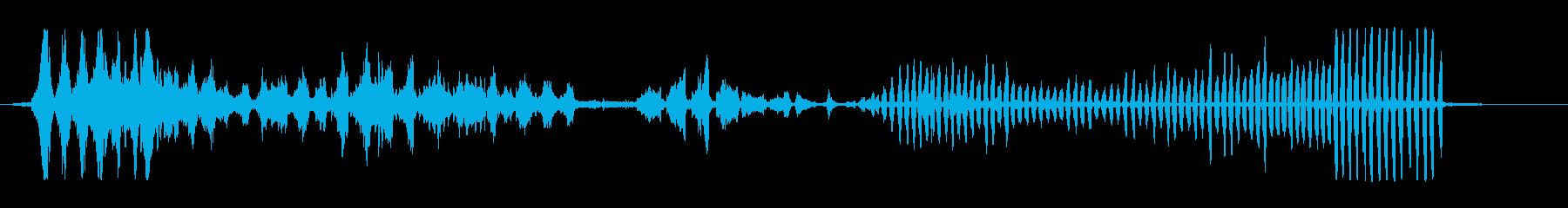 ハヤブサの再生済みの波形