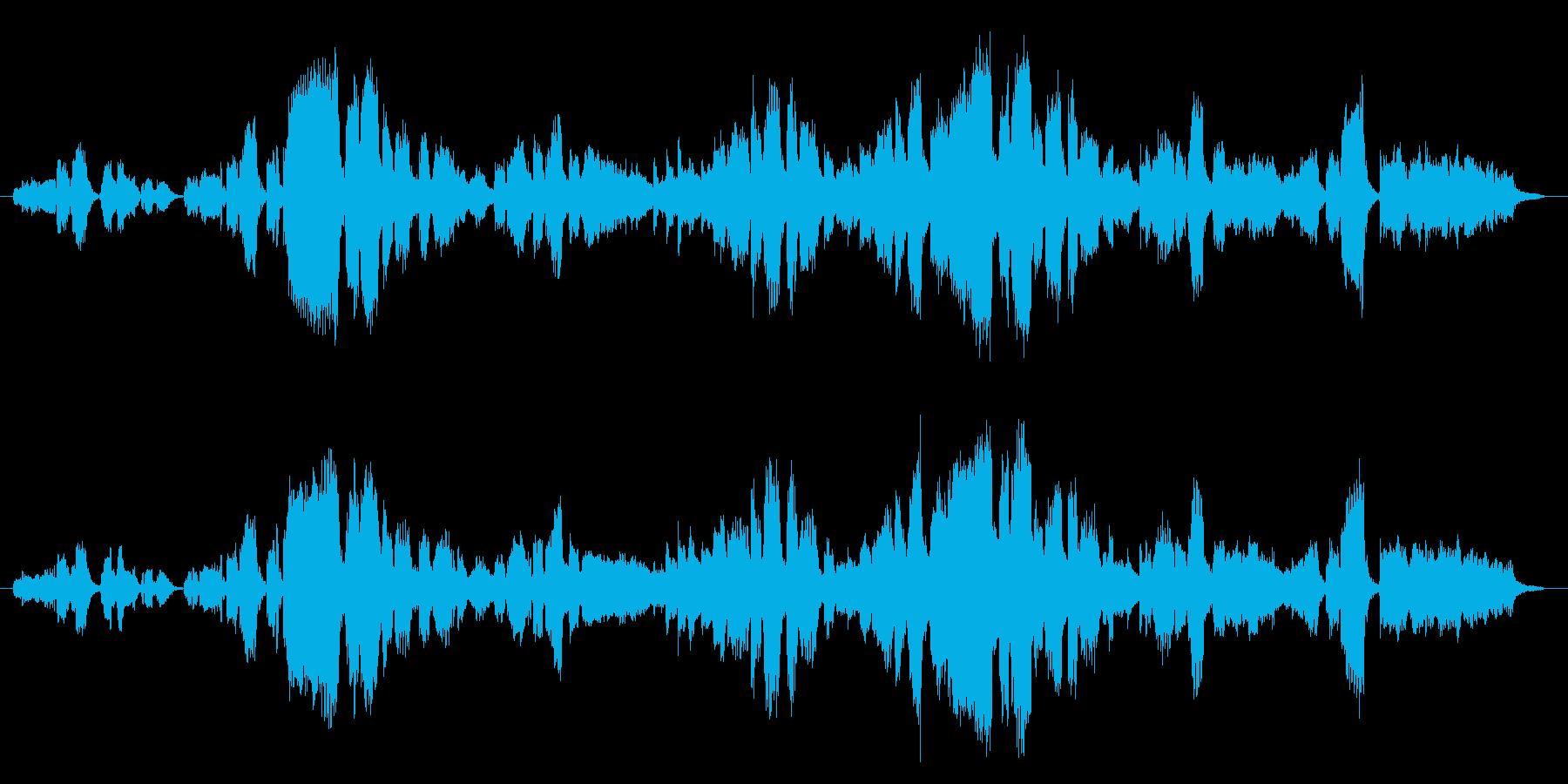 生演奏「アメージンググレース」歌&ピアノの再生済みの波形