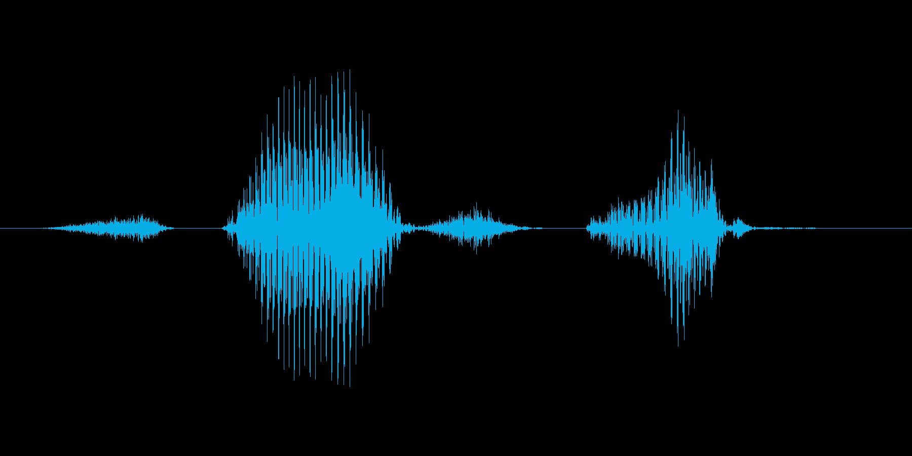 ステージ5(ご)の再生済みの波形