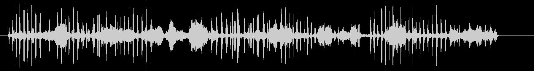アザラシ、ケープファーバーク、鳴き...の未再生の波形