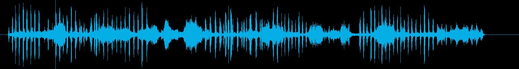 アザラシ、ケープファーバーク、鳴き...の再生済みの波形