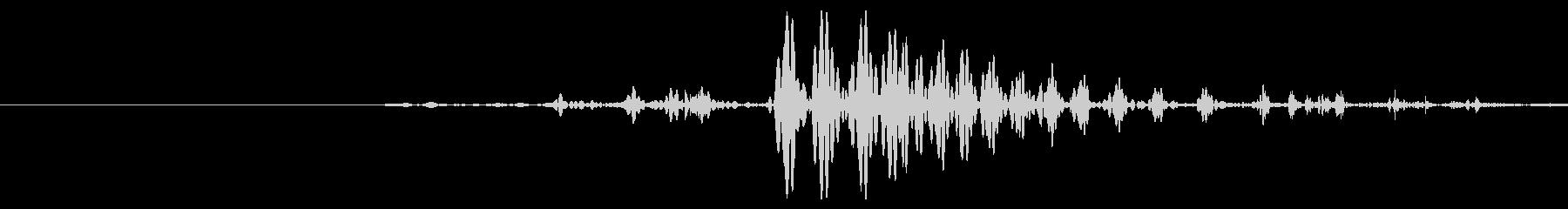 ゴクッ。人・動物が飲み込むときの喉の音の未再生の波形