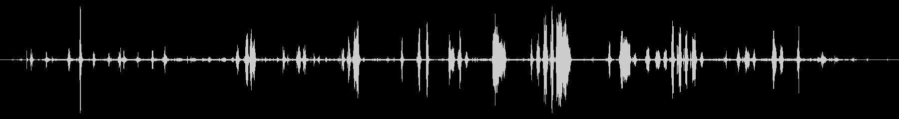 大型のイノシシまたは豚:ヘビークロ...の未再生の波形