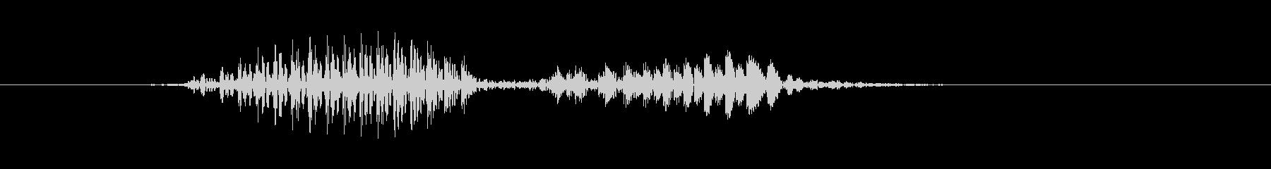 双方向ラジオ、男性の声:ロジャーの未再生の波形