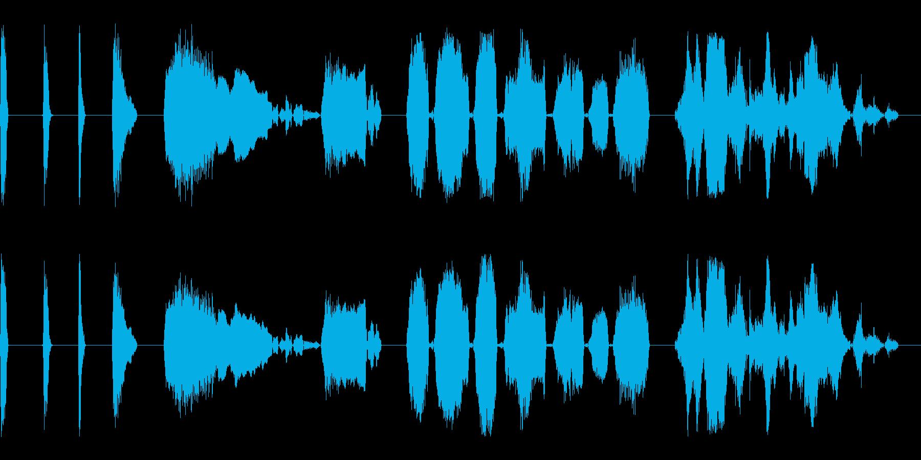 SCREAMS、GROANS、SC...の再生済みの波形