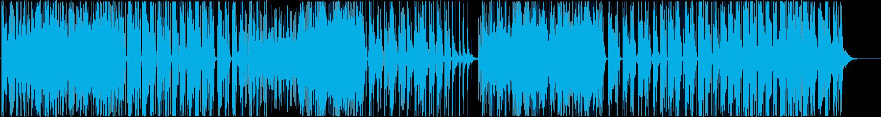 Muzhhikの再生済みの波形