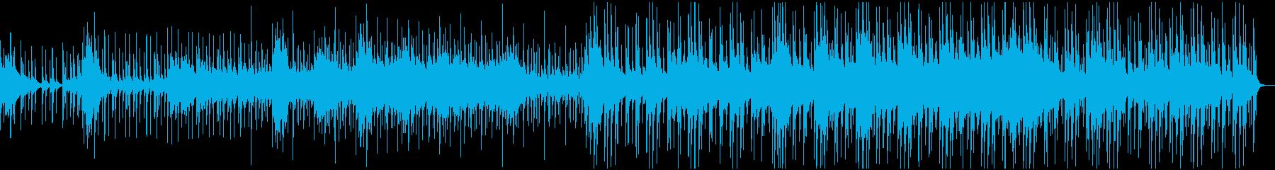 様々なパーカッションとシタール、ピアノの再生済みの波形