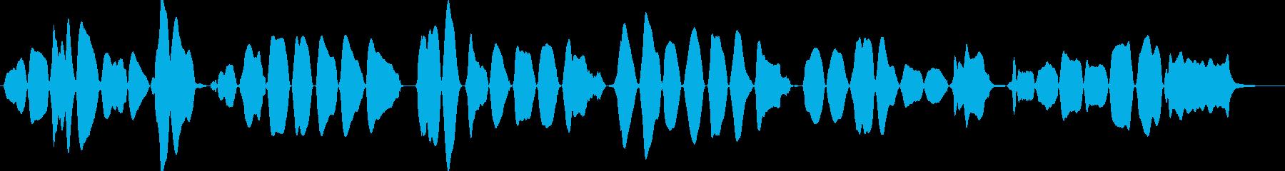 バイオリン初心者が弾くきらきら星の再生済みの波形