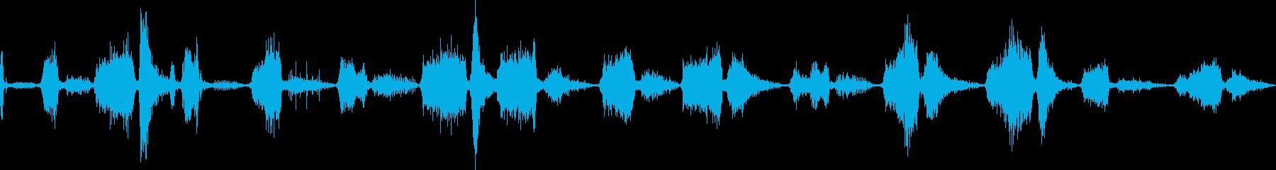 タイガーグロール。チャフのうなり声...の再生済みの波形