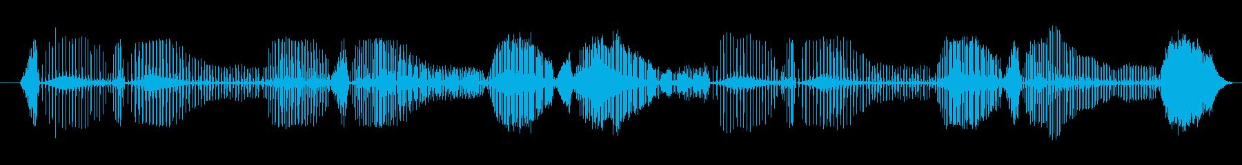 ノイズ ジューシーラトルシーケンス03の再生済みの波形