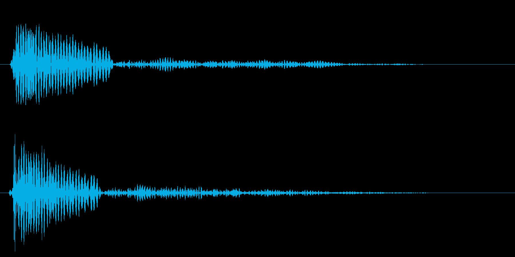 チュ〜ッ(小鳥のさえずり音・警戒音)の再生済みの波形