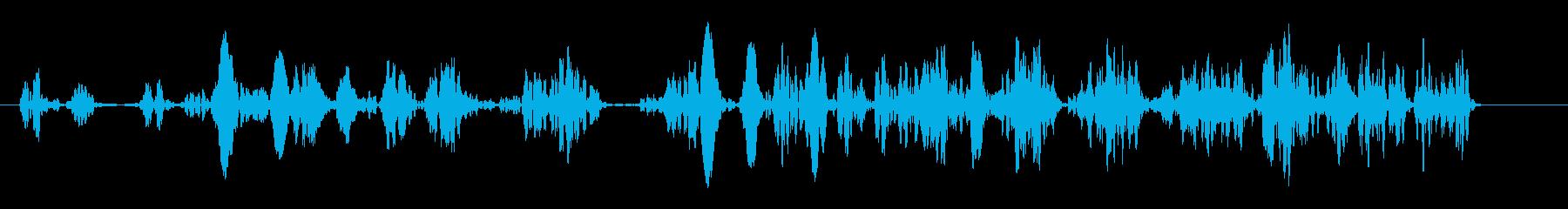泡が湧き上る音(細かい、大量)の再生済みの波形