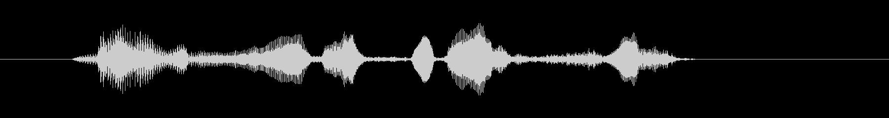 ロイヤルフラッシュ(女性・明るい)の未再生の波形
