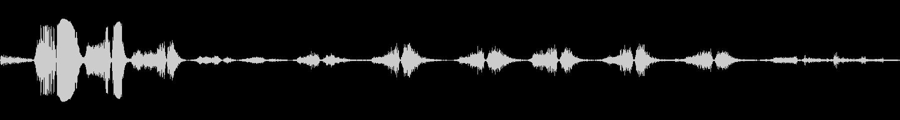 タイガーブレスロアいびきの未再生の波形
