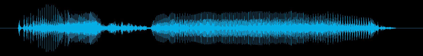 やほーの再生済みの波形