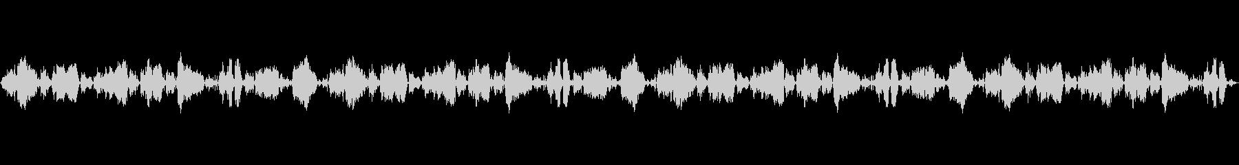 マッドドッグ、SNARLSドッグの未再生の波形