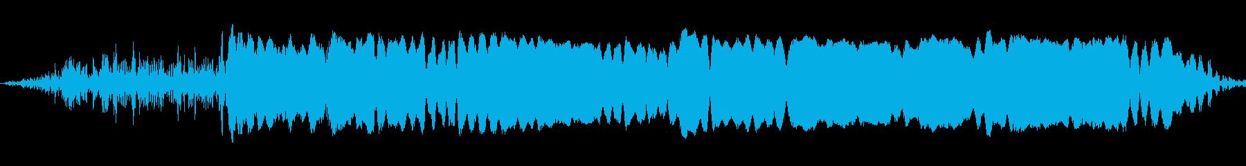 雌、雌の再生済みの波形