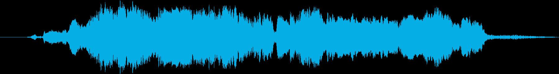 シャチのシャチ:鳴き声、クジラ、イルカの再生済みの波形