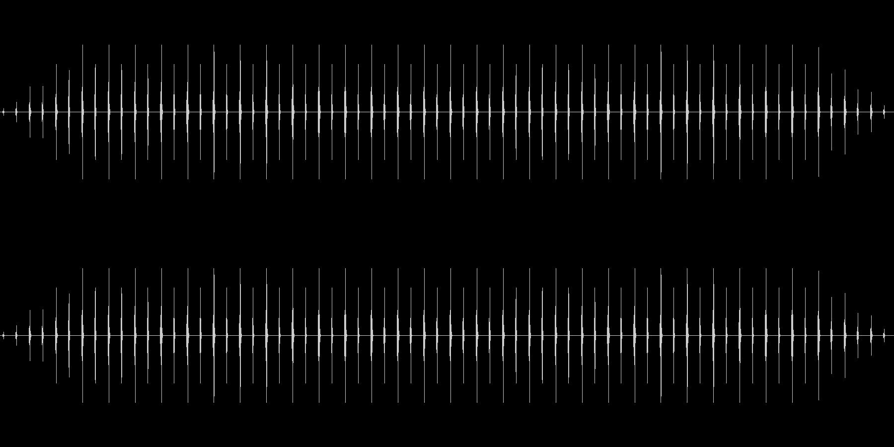 時計 ticktock_41-1_dryの未再生の波形