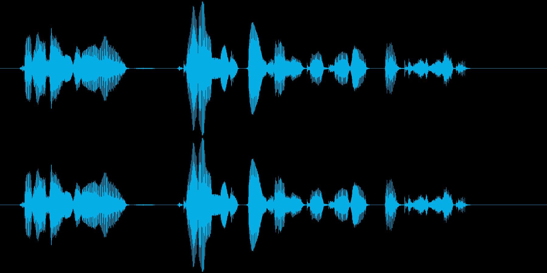この番組は、ご覧のスポンサーの提供で、…の再生済みの波形
