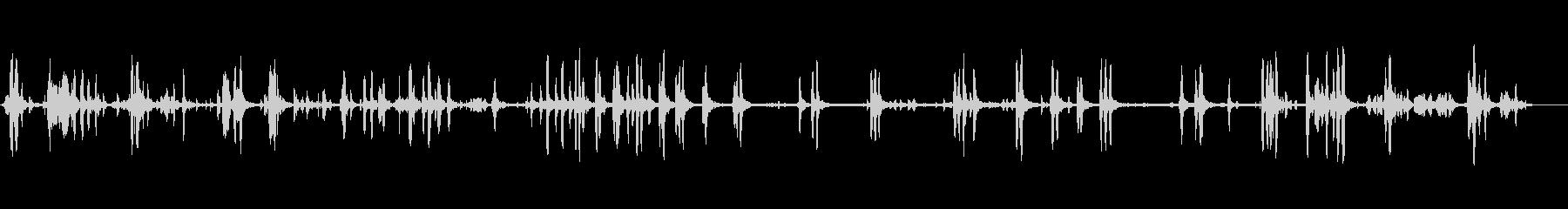 歌う白鳥-鳥1の未再生の波形