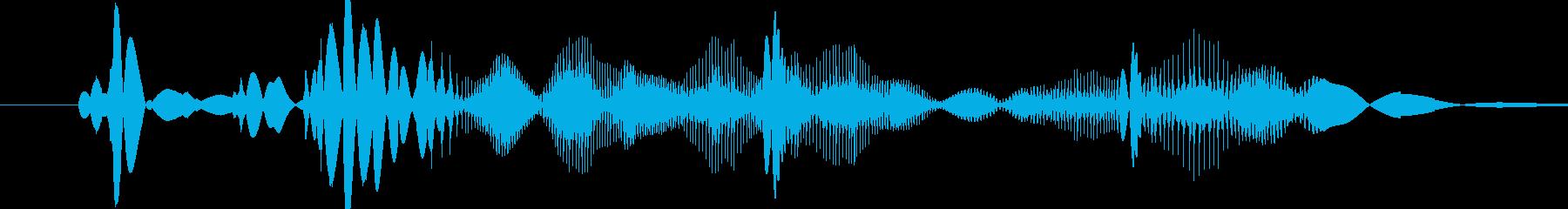 レコードスクラッチの再生済みの波形