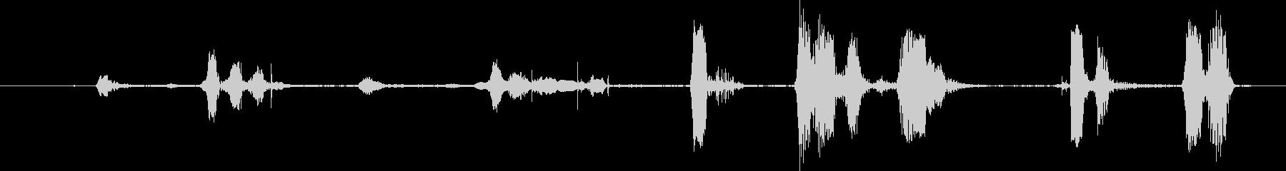 単一のホッキョクオオカミ:悪質なB...の未再生の波形