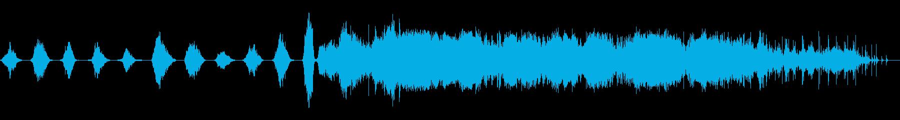 スモールスタジオオーディエンス:1...の再生済みの波形
