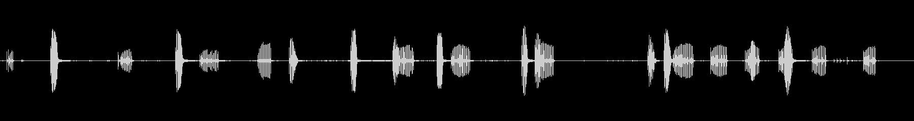 歌う白鳥-鳥の未再生の波形