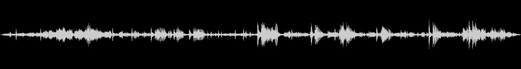 環境音 川のベッド夜明け鳥動揺01の未再生の波形