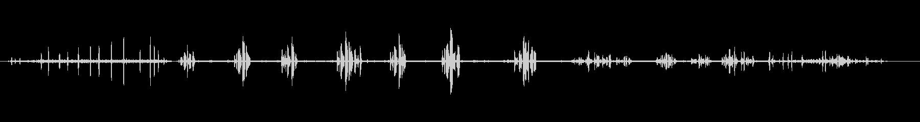 一般的なタラビラ-BitxacComúの未再生の波形
