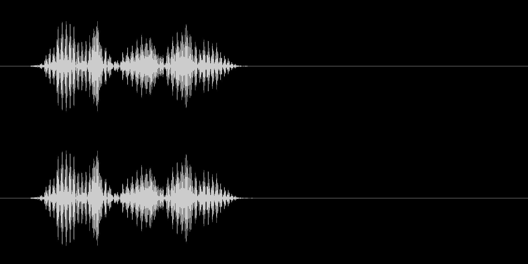 キュ(シューズと床が摩擦した音)の未再生の波形