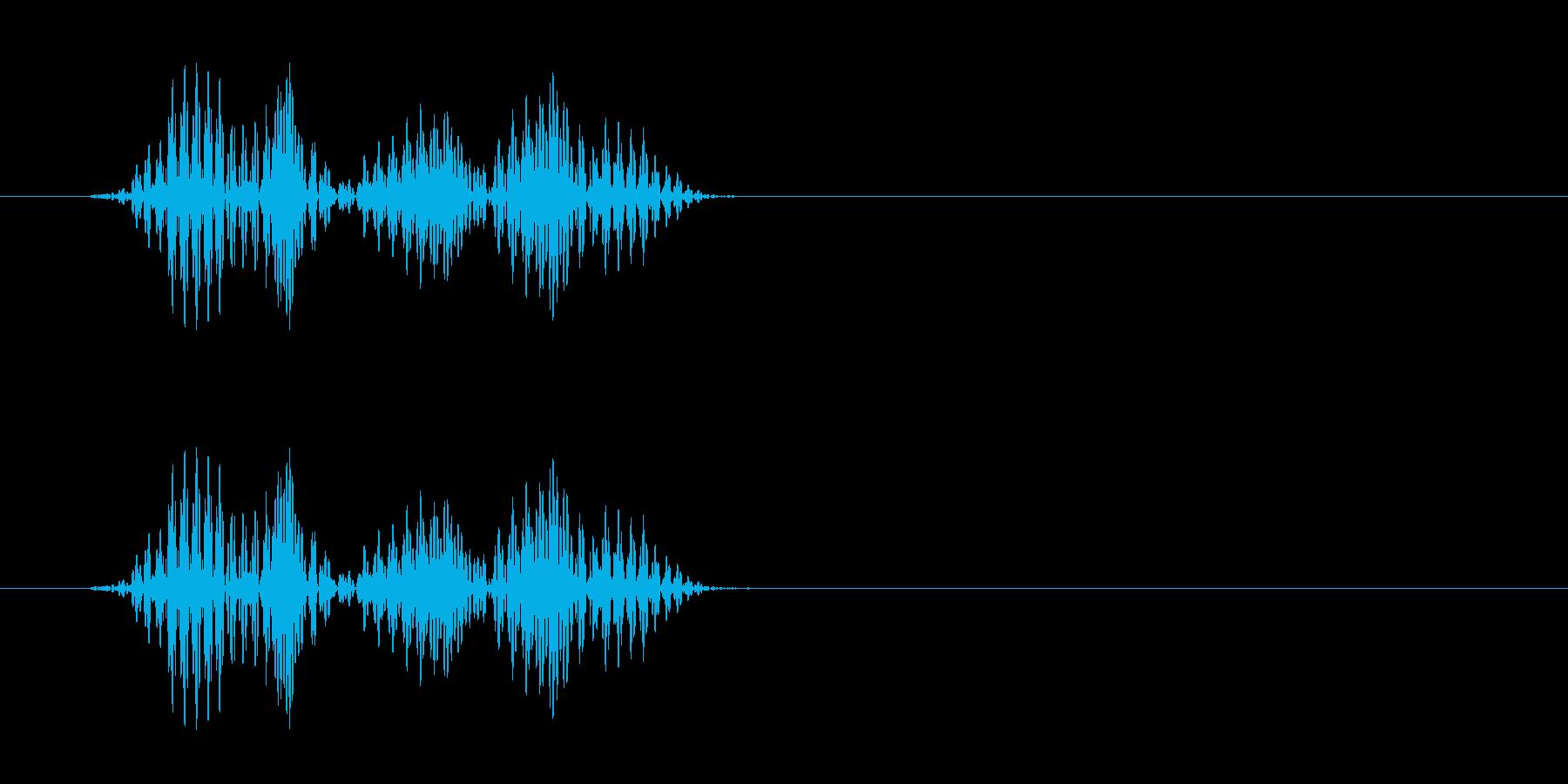 キュ(シューズと床が摩擦した音)の再生済みの波形