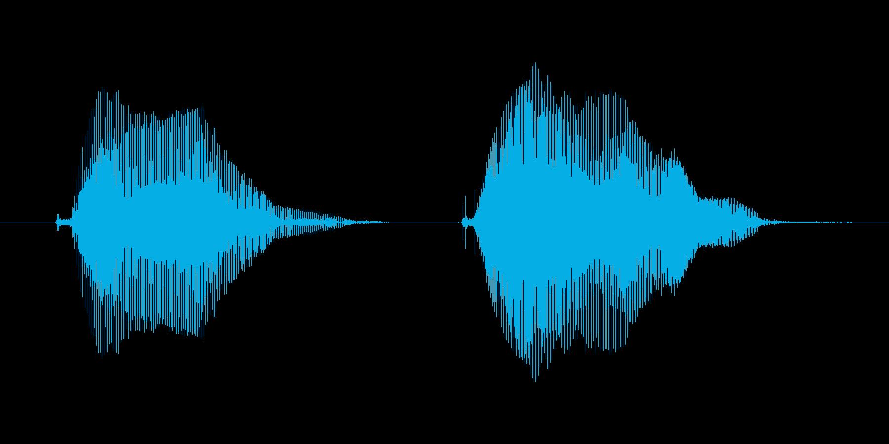 きゅんきゅん1の再生済みの波形