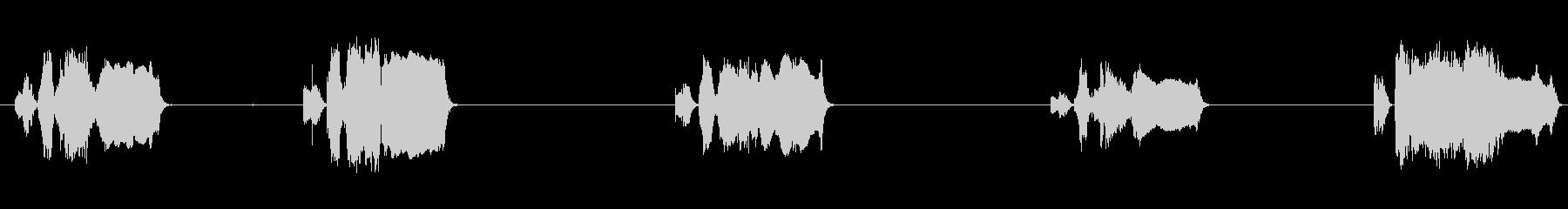 ルースタークロウズ5回、屋内、鳥;...の未再生の波形