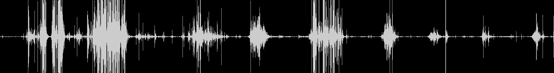 固いスナックを食べるバリバリという音の未再生の波形