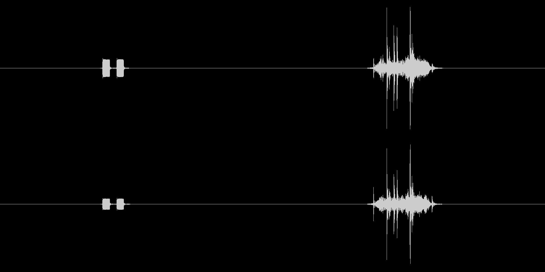 【録音】一眼レフの音  ピピッ カシャッの未再生の波形