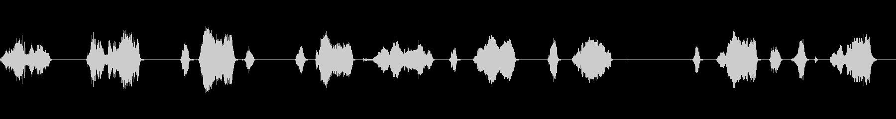 コーンブルーム、ロングストロークク...の未再生の波形