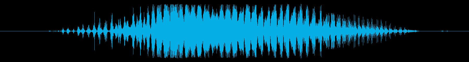 モンスター 痛みを伴う叫び05の再生済みの波形