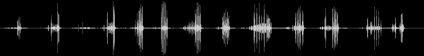 鳥ナイチンゲールの未再生の波形