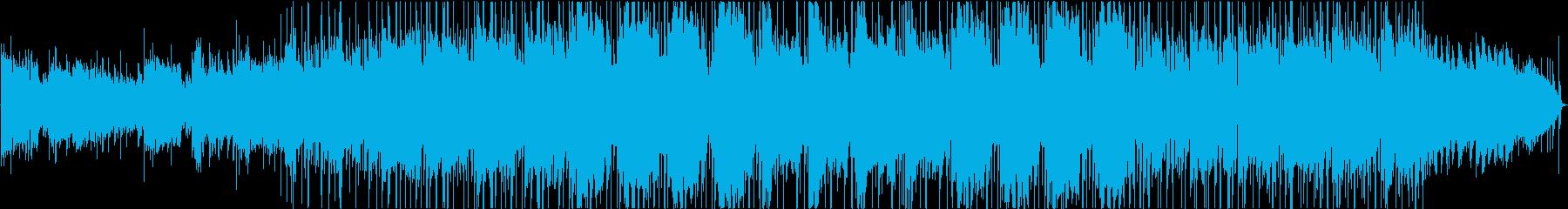 金属 緊張感 野生 ビンテージ エ...の再生済みの波形