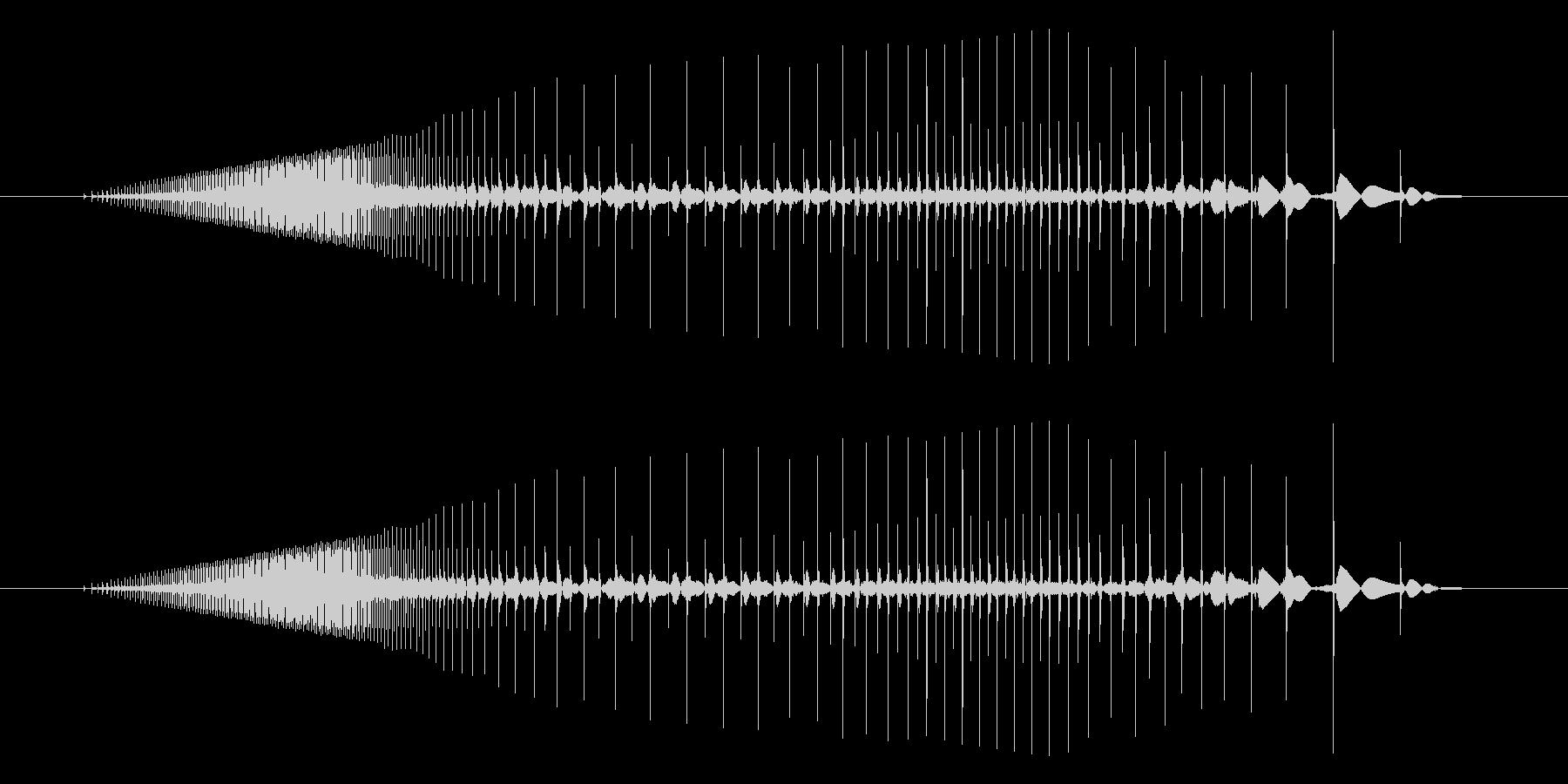 ビニールがこすれるギュッ、という音ですの未再生の波形