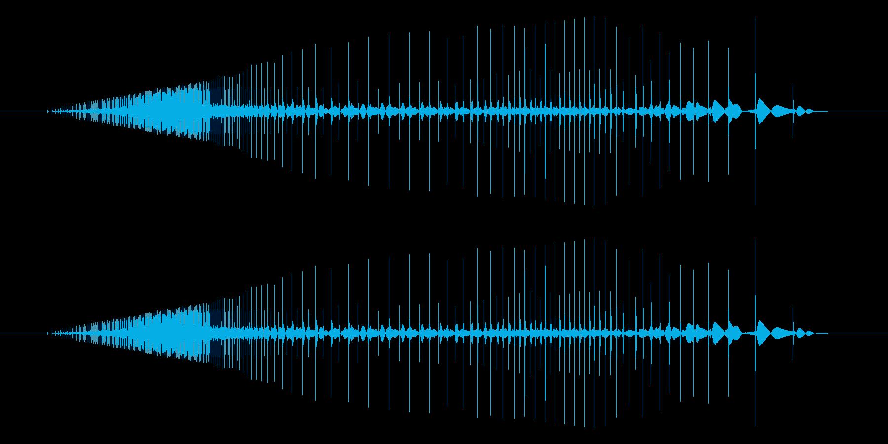 ビニールがこすれるギュッ、という音ですの再生済みの波形